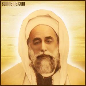Sheykh Alawi
