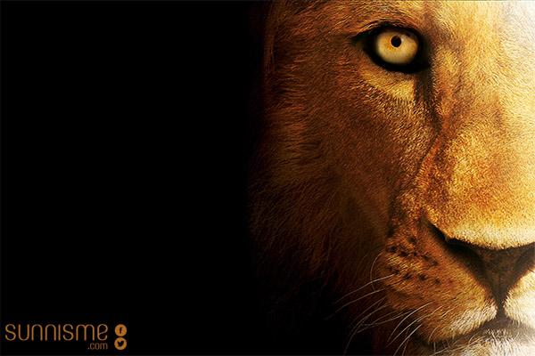 Ali Lion Allâh